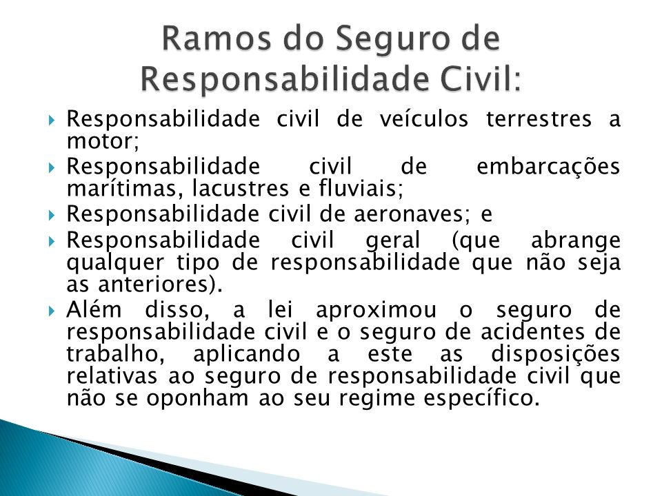 Ramos do Seguro de Responsabilidade Civil: