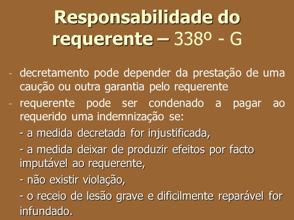 Responsabilidade do requerente – 338º - G