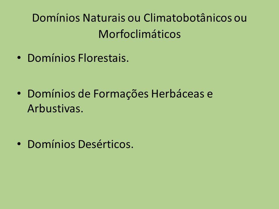 Domínios Naturais ou Climatobotânicos ou Morfoclimáticos