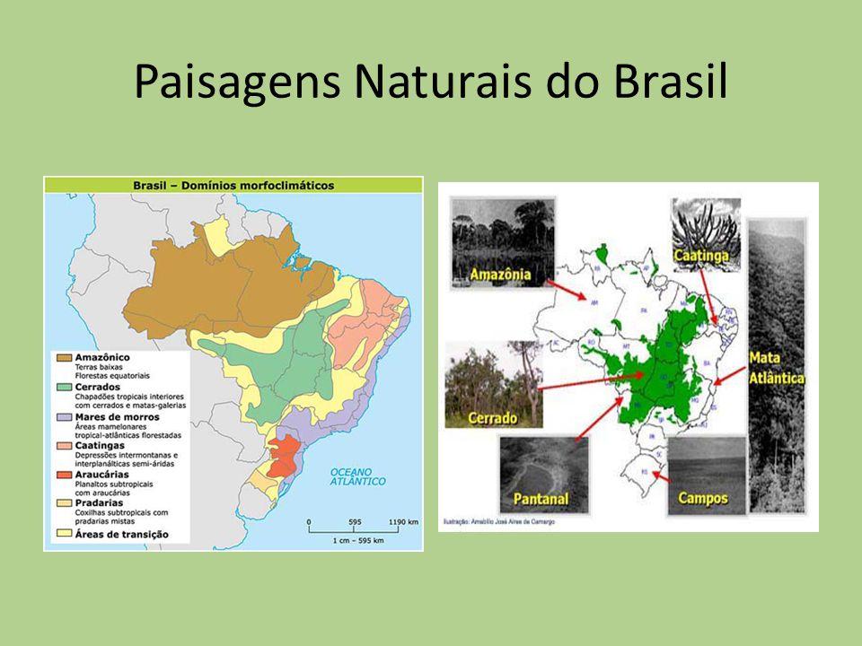 Paisagens Naturais do Brasil