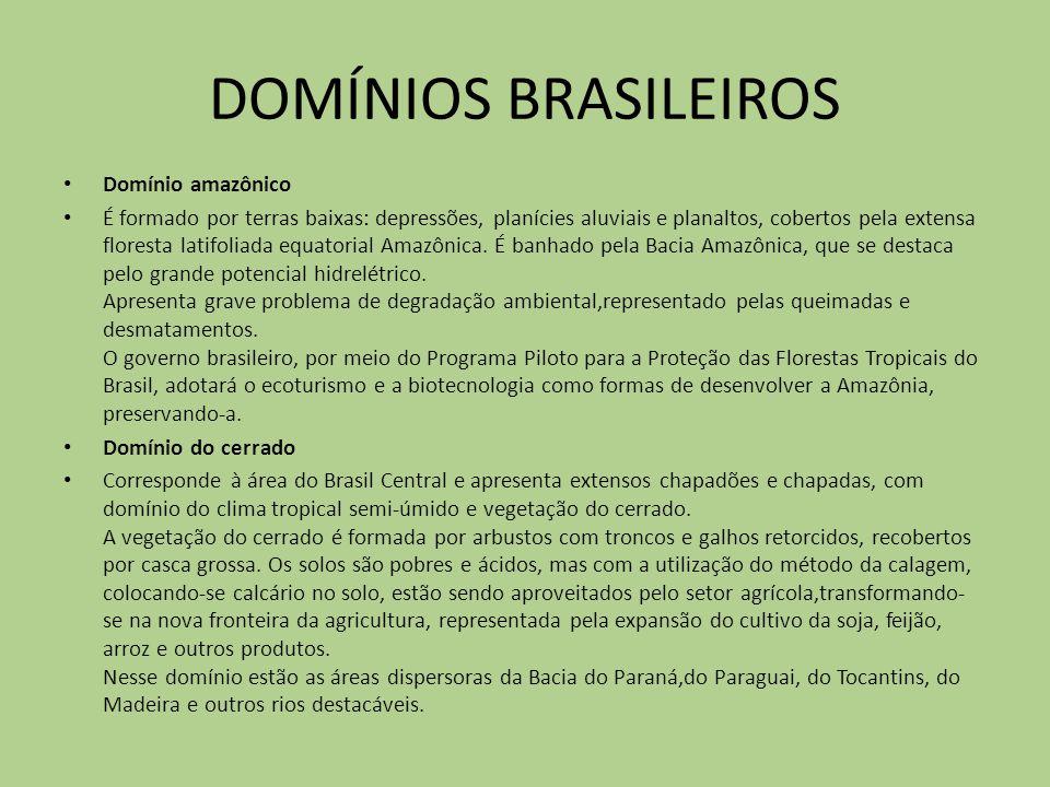 DOMÍNIOS BRASILEIROS Domínio amazônico