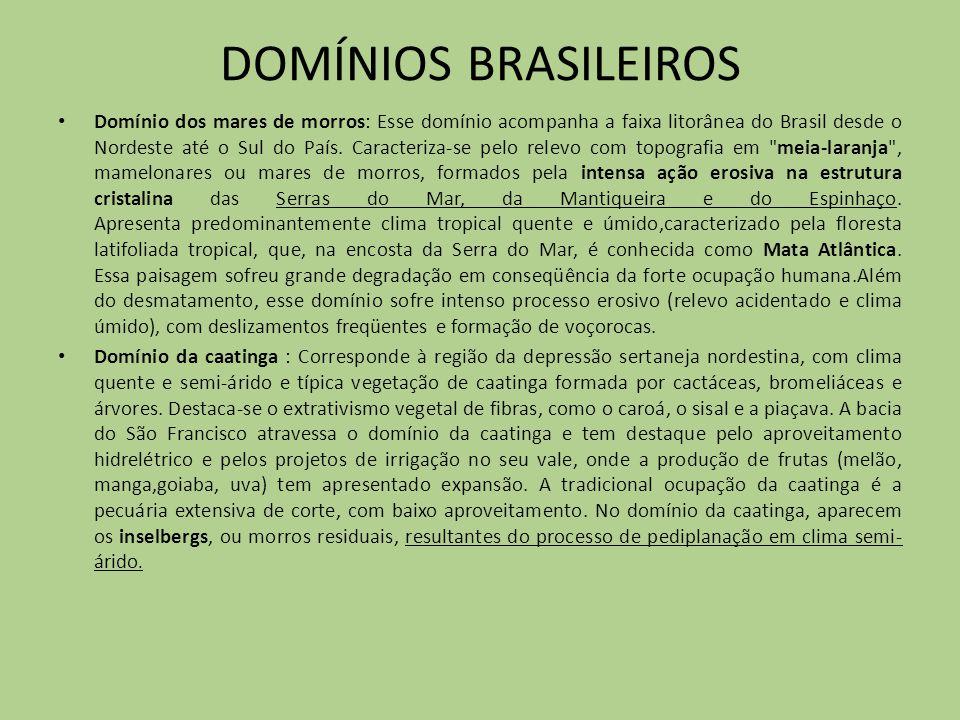 DOMÍNIOS BRASILEIROS