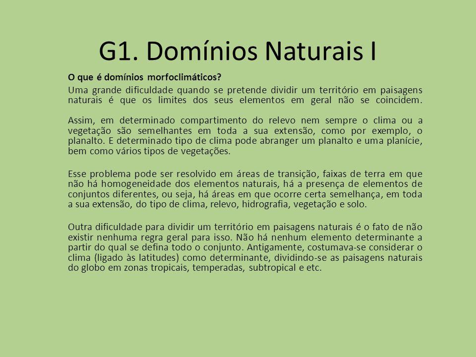G1. Domínios Naturais I O que é domínios morfoclimáticos