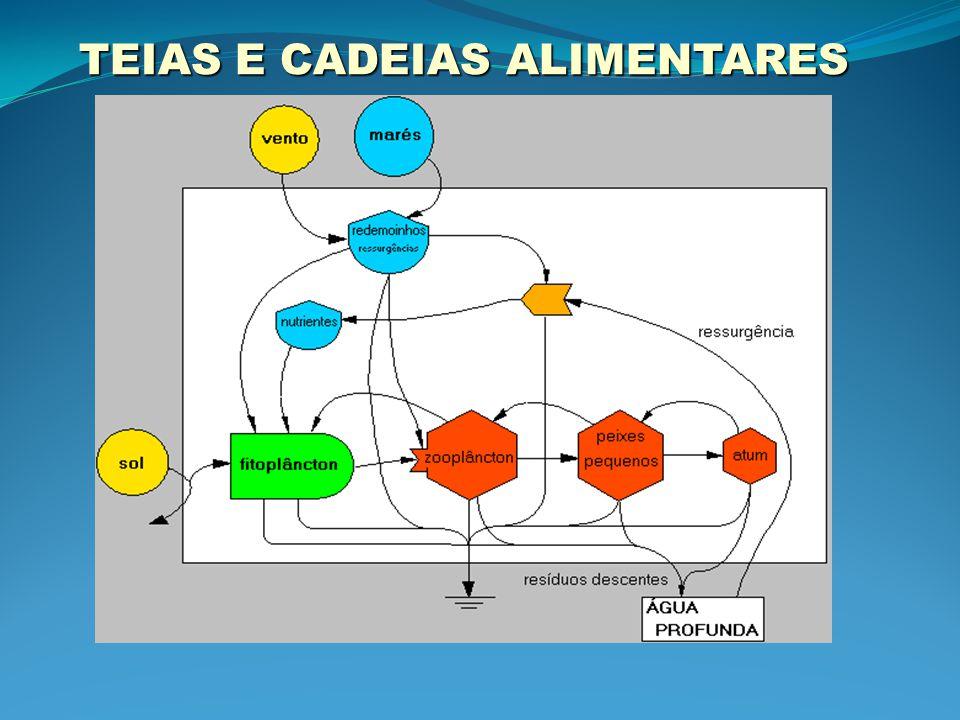 TEIAS E CADEIAS ALIMENTARES