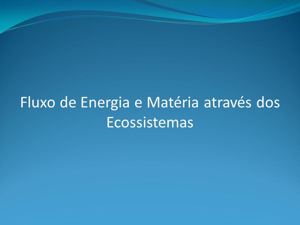 Fluxo de Energia e Matéria através dos Ecossistemas