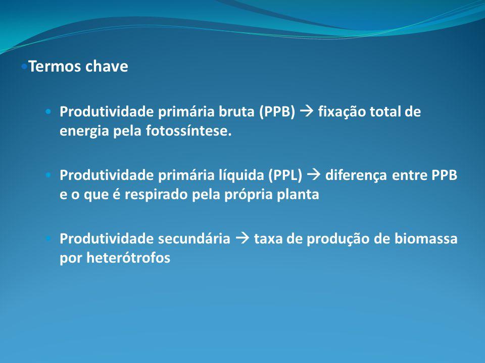Termos chave Produtividade primária bruta (PPB)  fixação total de energia pela fotossíntese.