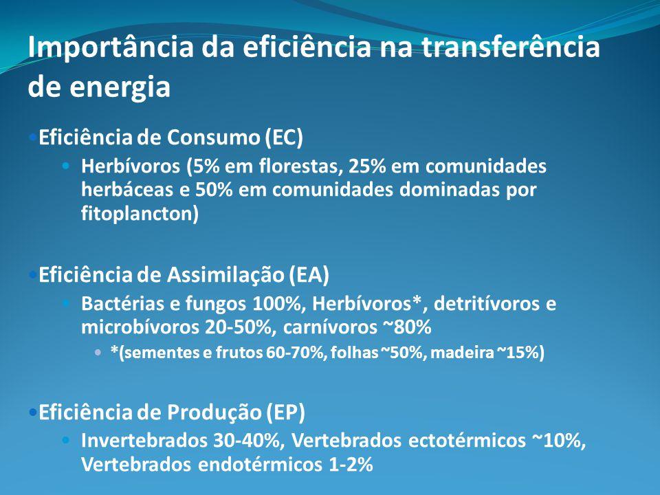 Importância da eficiência na transferência de energia