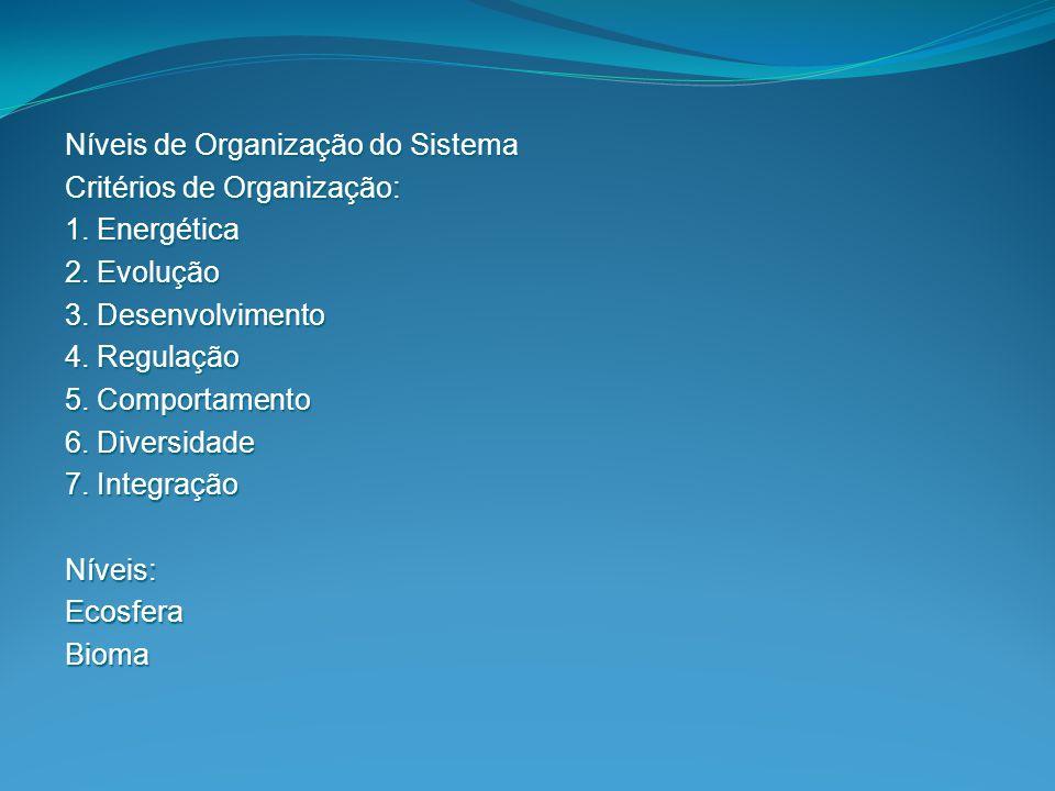 Níveis de Organização do Sistema