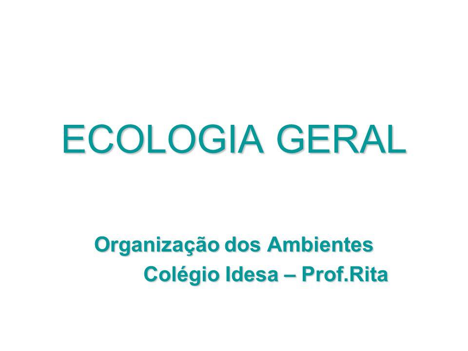 Organização dos Ambientes Colégio Idesa – Prof.Rita