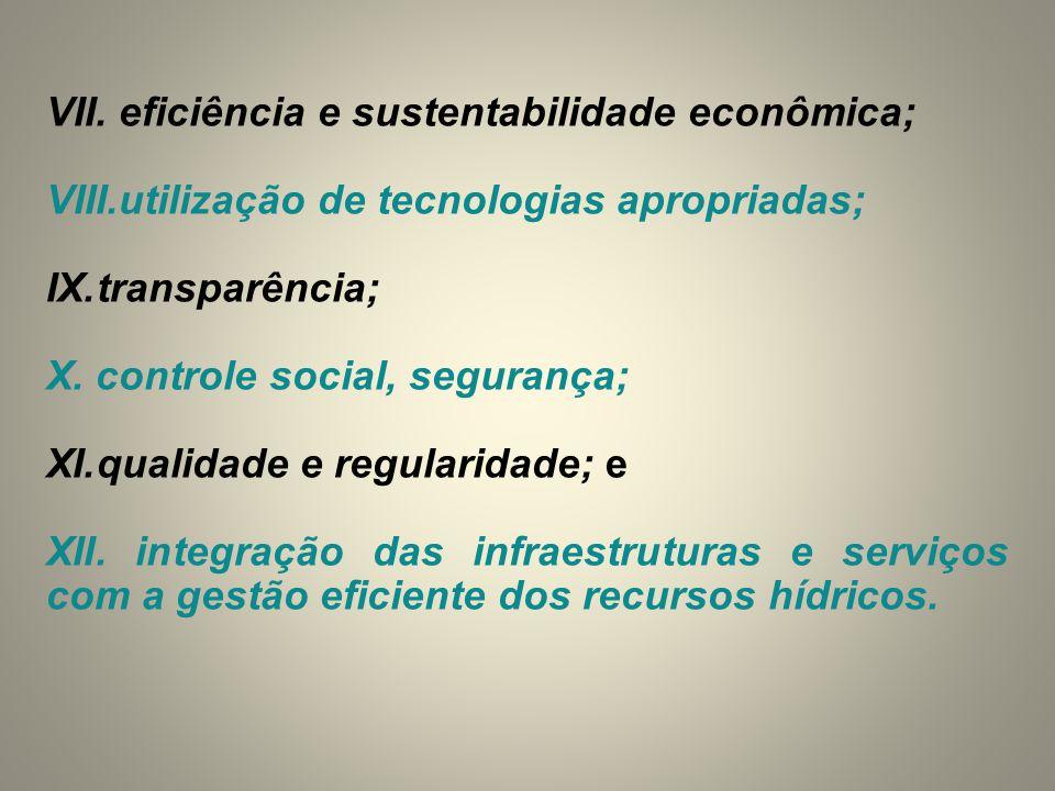 VII. eficiência e sustentabilidade econômica;