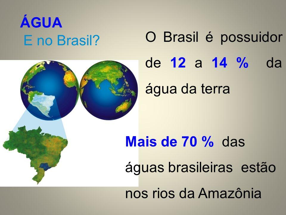 ÁGUA O Brasil é possuidor de 12 a 14 % da água da terra.