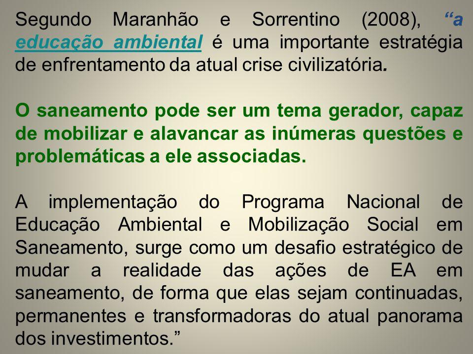 Segundo Maranhão e Sorrentino (2008), a educação ambiental é uma importante estratégia de enfrentamento da atual crise civilizatória.