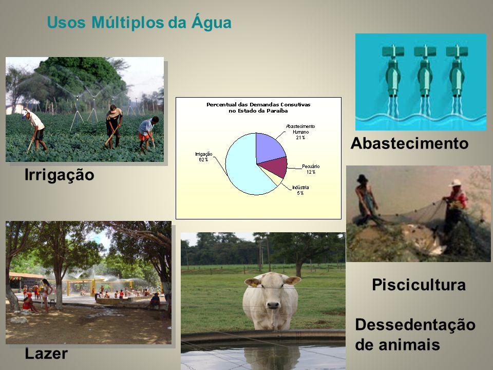 Usos Múltiplos da Água Abastecimento Irrigação Piscicultura Dessedentação de animais Lazer