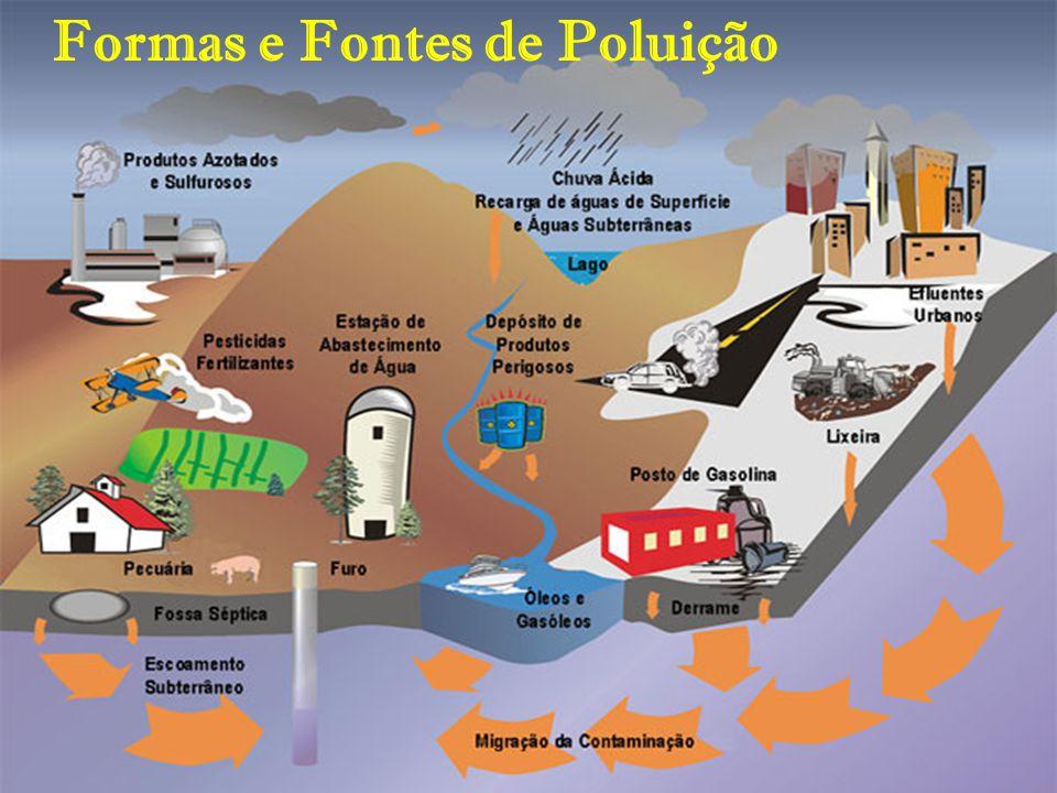Formas e Fontes de Poluição