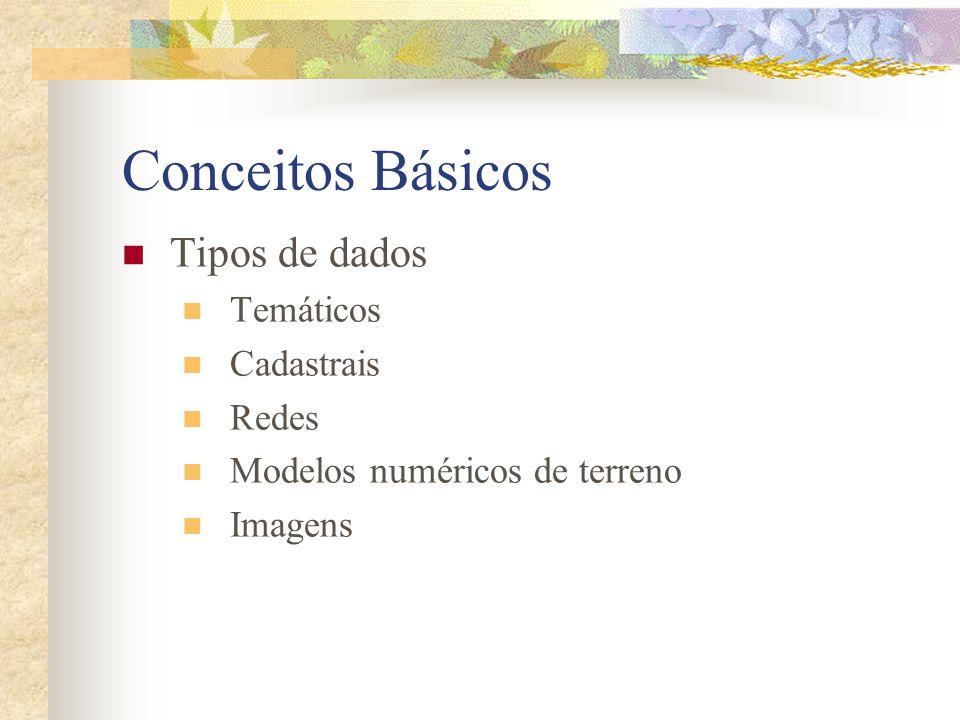 Conceitos Básicos Tipos de dados Temáticos Cadastrais Redes