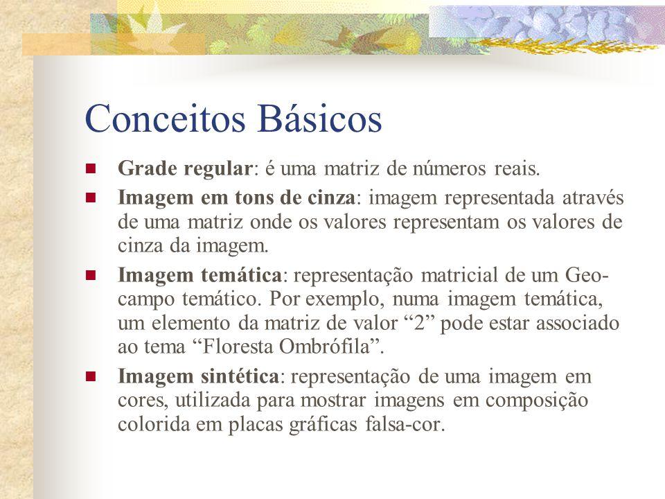 Conceitos Básicos Grade regular: é uma matriz de números reais.