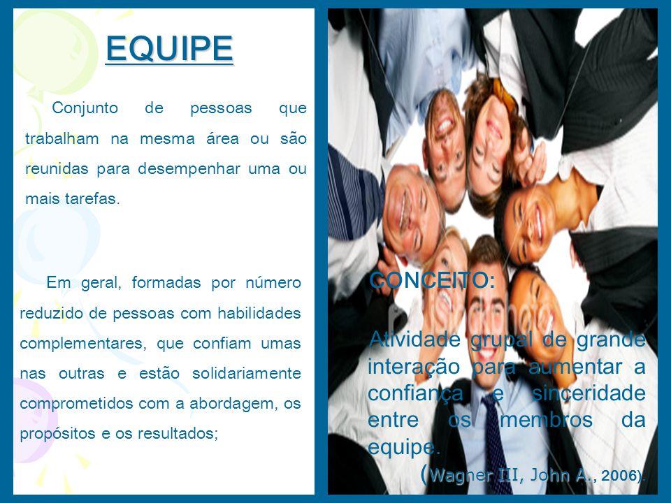 EQUIPE Conjunto de pessoas que trabalham na mesma área ou são reunidas para desempenhar uma ou mais tarefas.