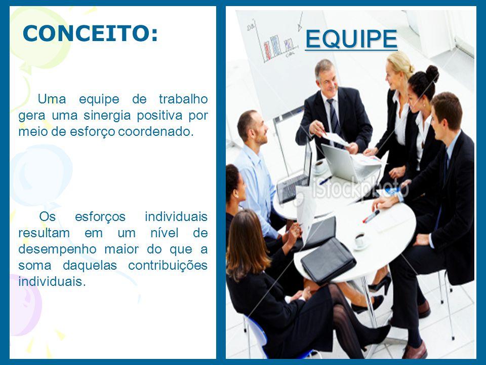 CONCEITO: EQUIPE. Uma equipe de trabalho gera uma sinergia positiva por meio de esforço coordenado.