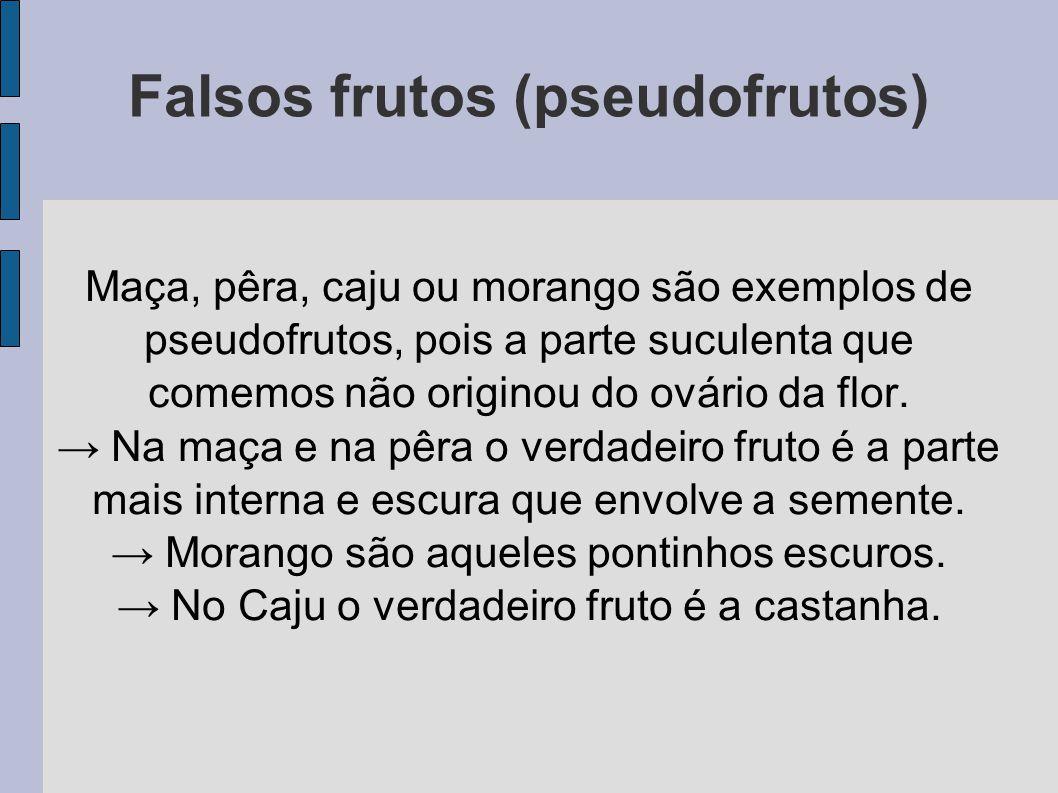 Falsos frutos (pseudofrutos)