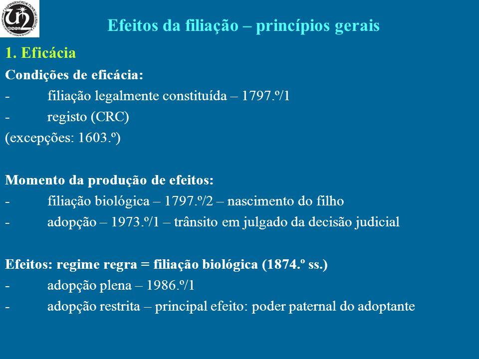 Efeitos da filiação – princípios gerais
