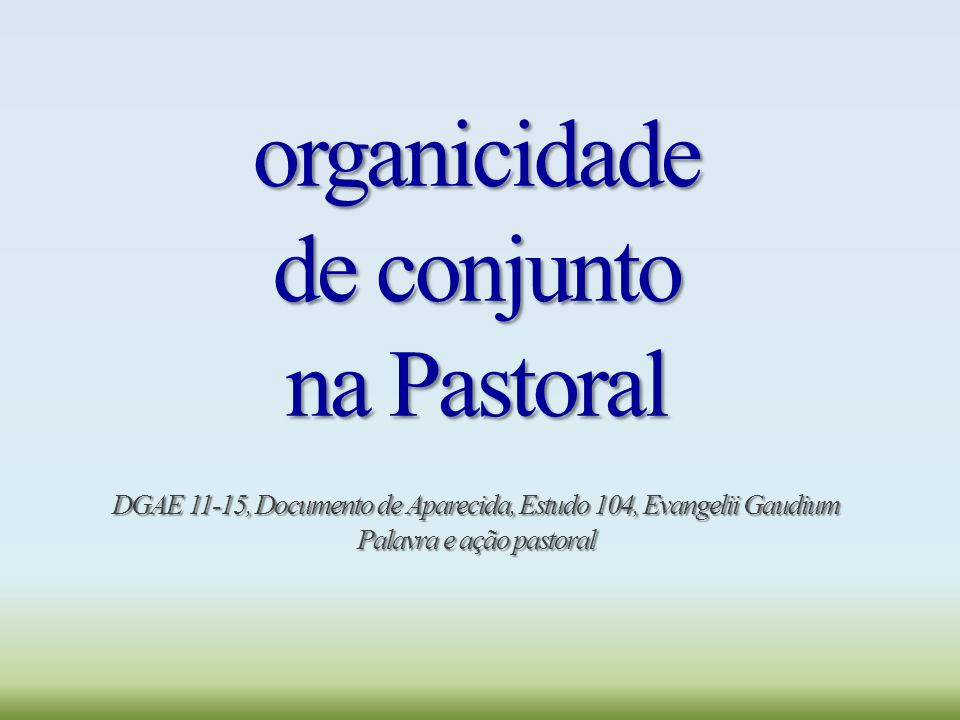 organicidade de conjunto na Pastoral