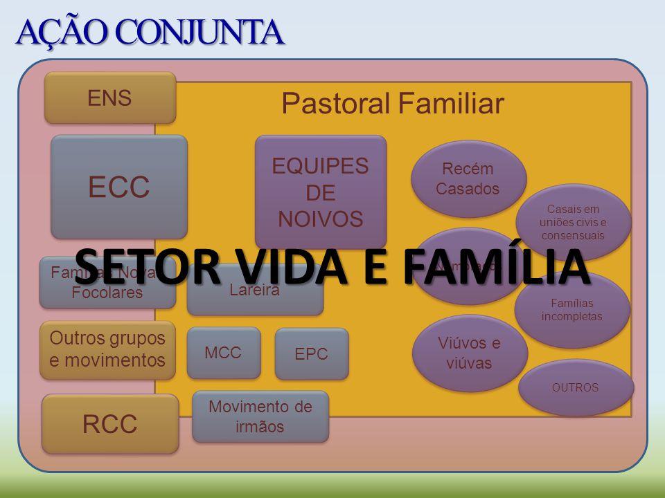SETOR VIDA E FAMÍLIA AÇÃO CONJUNTA Pastoral Familiar ECC RCC ENS