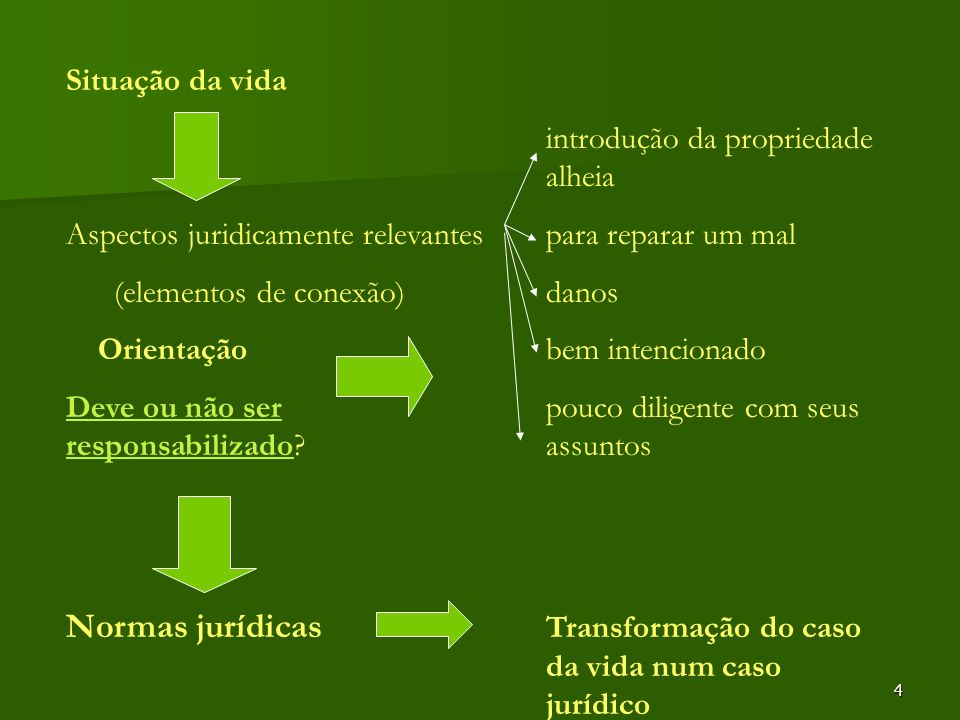 Normas jurídicas Transformação do caso da vida num caso jurídico