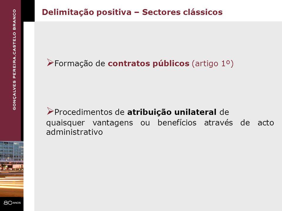 Formação de contratos públicos (artigo 1º)