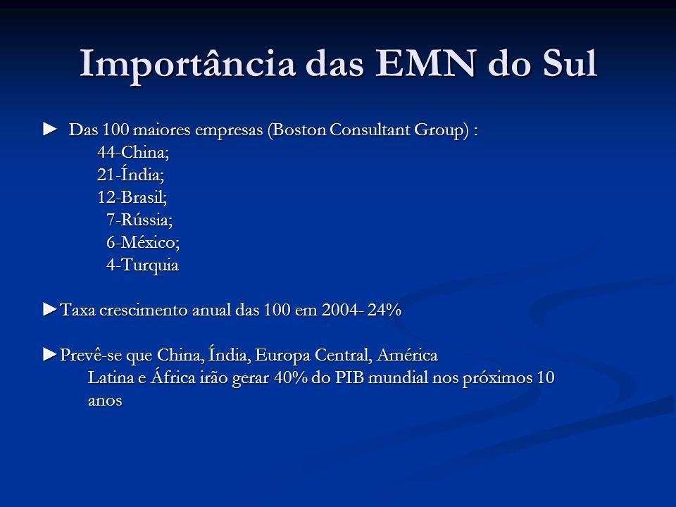 Importância das EMN do Sul