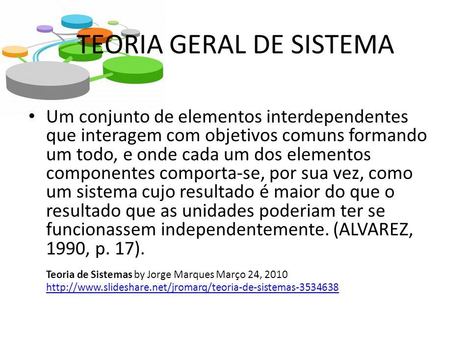 TEORIA GERAL DE SISTEMA