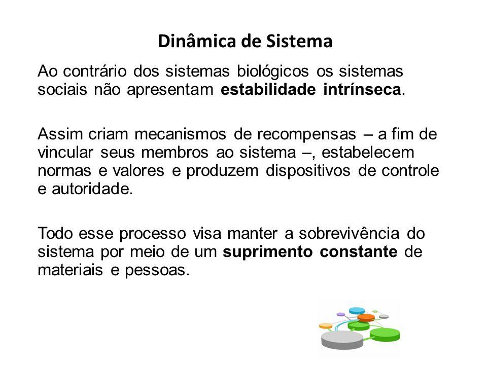 Dinâmica de Sistema Ao contrário dos sistemas biológicos os sistemas sociais não apresentam estabilidade intrínseca.