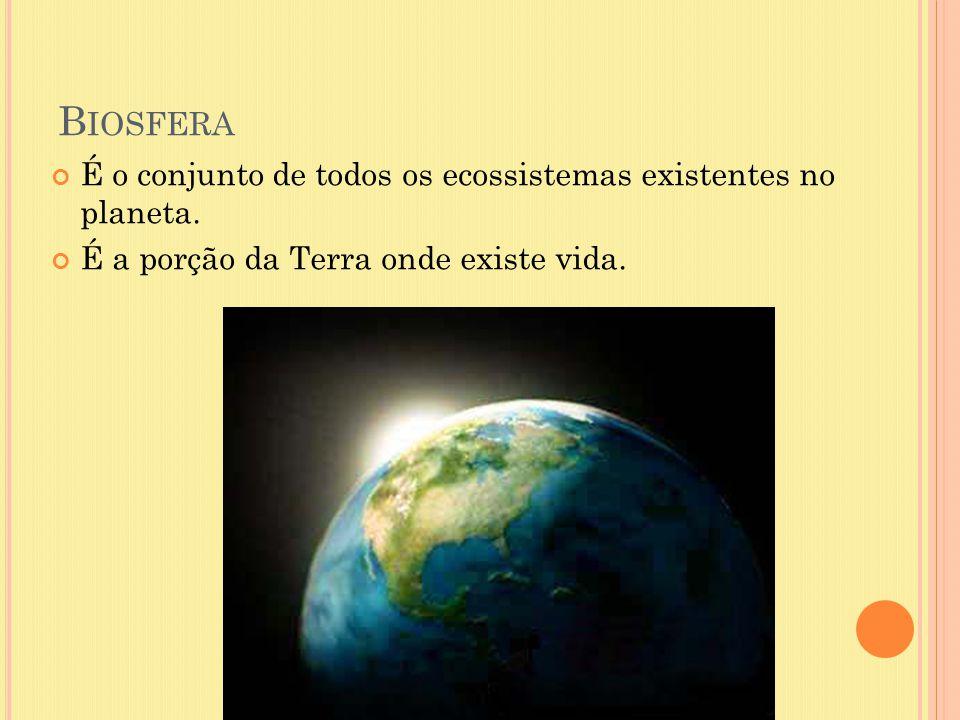 Biosfera É o conjunto de todos os ecossistemas existentes no planeta.