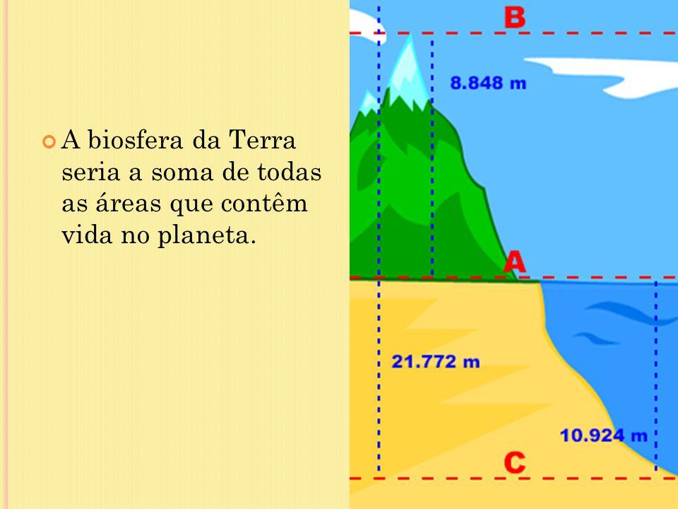 A biosfera da Terra seria a soma de todas as áreas que contêm vida no planeta.