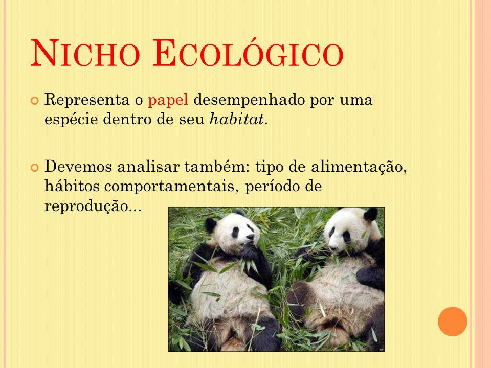 Nicho Ecológico Representa o papel desempenhado por uma espécie dentro de seu habitat.