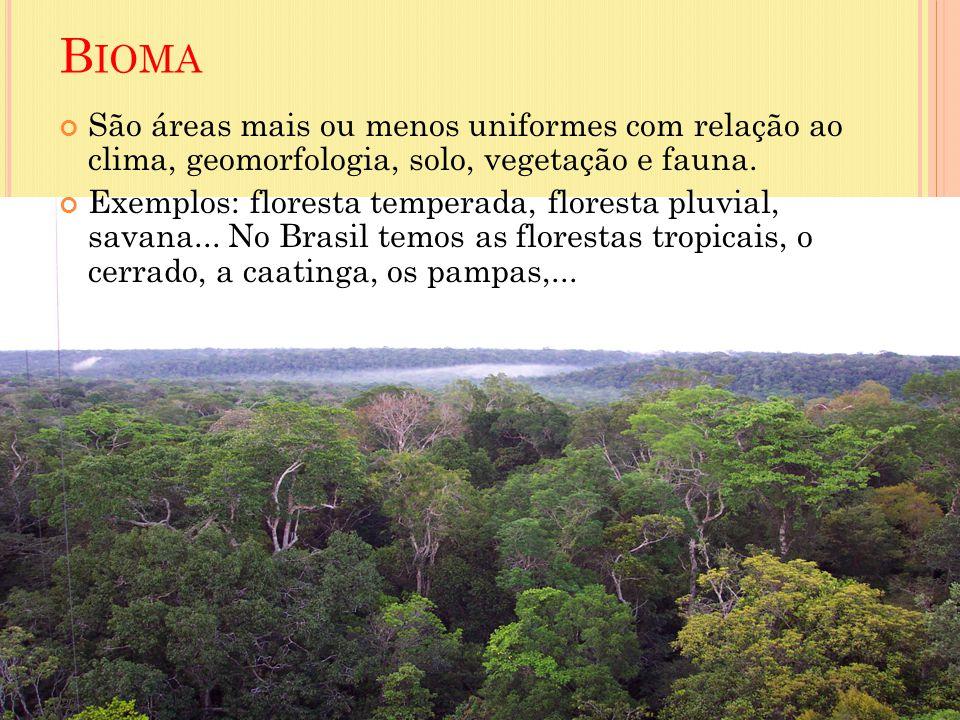 Bioma São áreas mais ou menos uniformes com relação ao clima, geomorfologia, solo, vegetação e fauna.