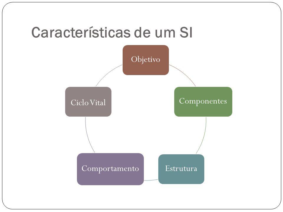 Características de um SI