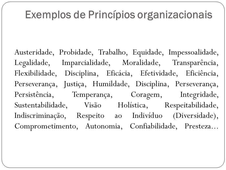 Exemplos de Princípios organizacionais