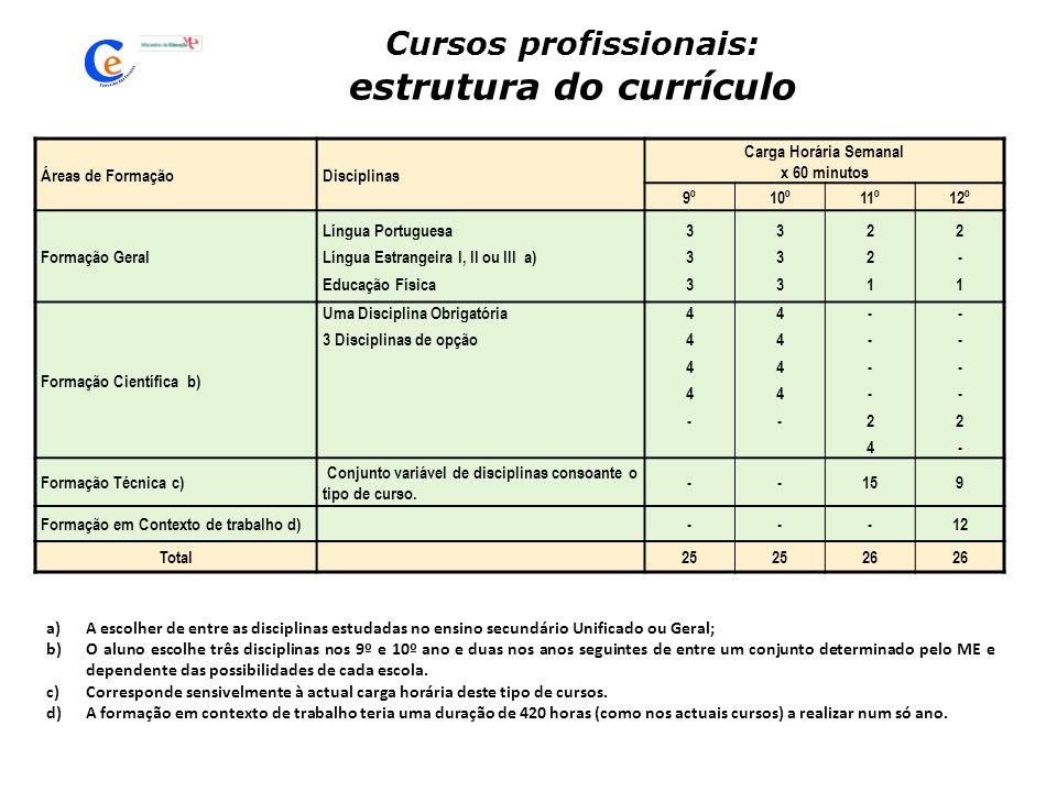 Cursos profissionais: estrutura do currículo