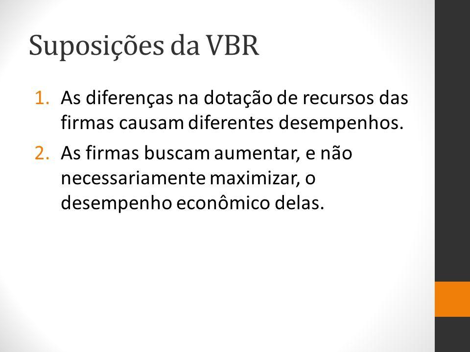 Suposições da VBR As diferenças na dotação de recursos das firmas causam diferentes desempenhos.
