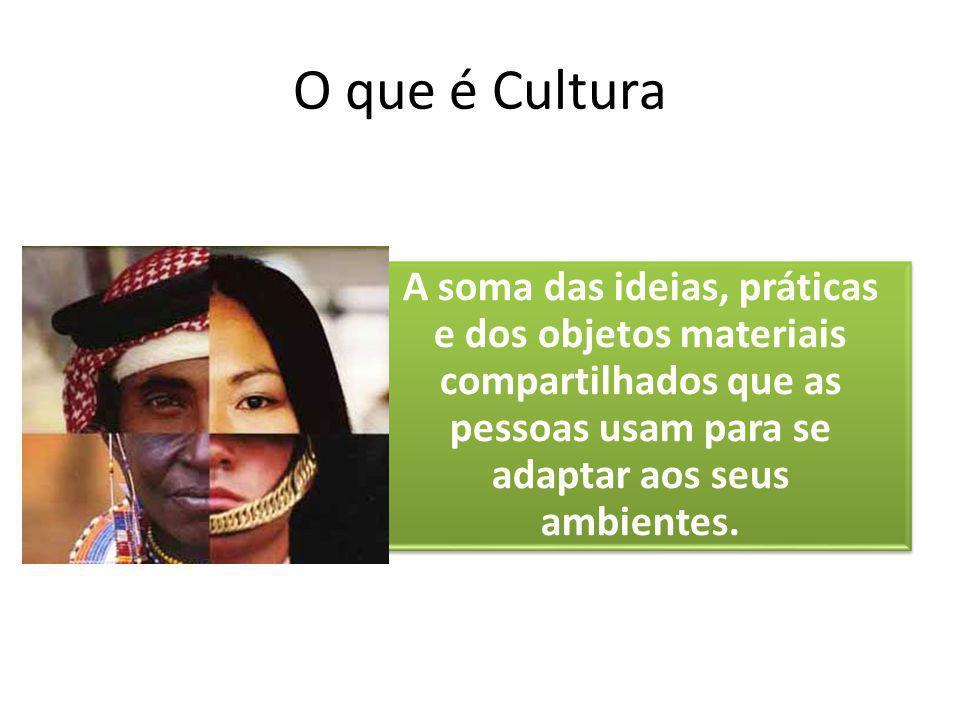 O que é Cultura A soma das ideias, práticas e dos objetos materiais compartilhados que as pessoas usam para se adaptar aos seus ambientes.