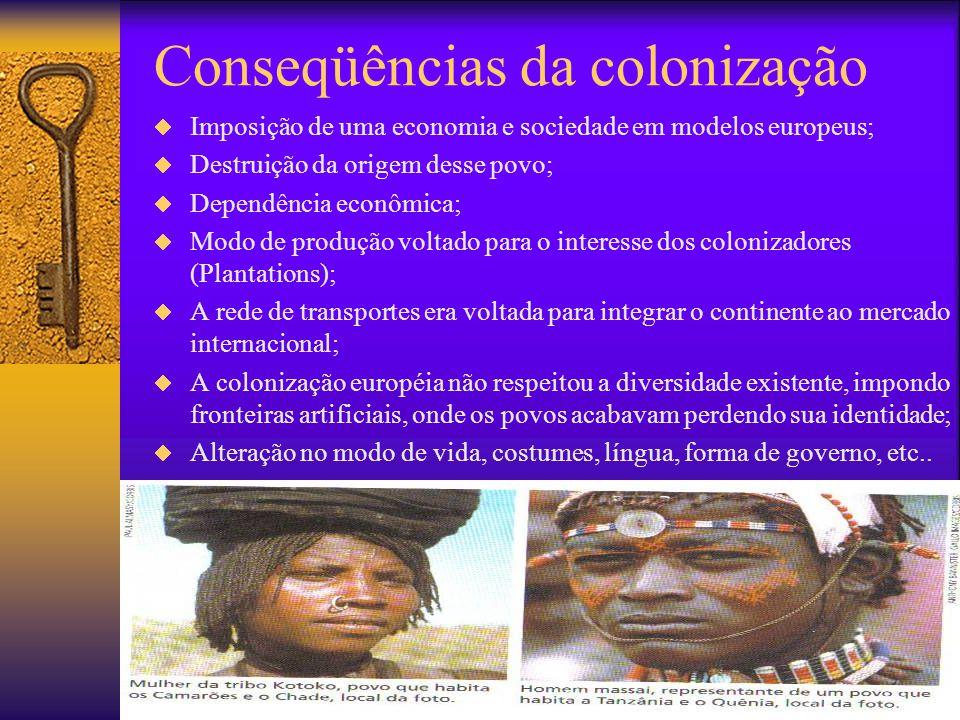 Conseqüências da colonização