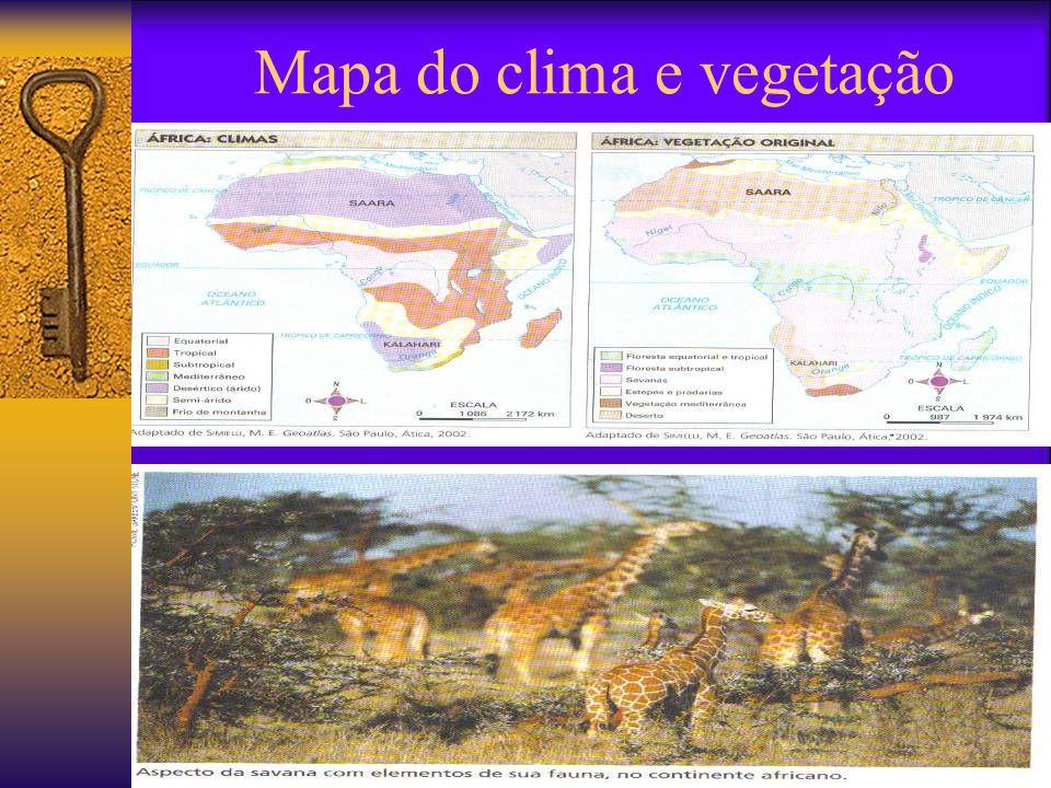 Mapa do clima e vegetação