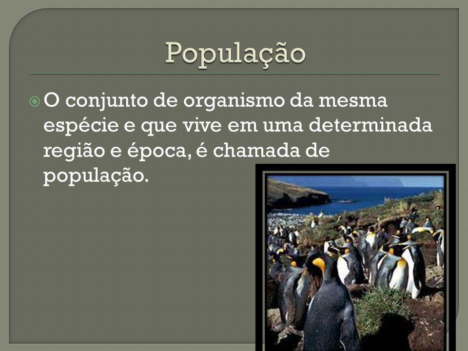 População O conjunto de organismo da mesma espécie e que vive em uma determinada região e época, é chamada de população.