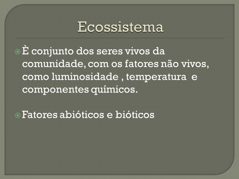 Ecossistema È conjunto dos seres vivos da comunidade, com os fatores não vivos, como luminosidade , temperatura e componentes químicos.