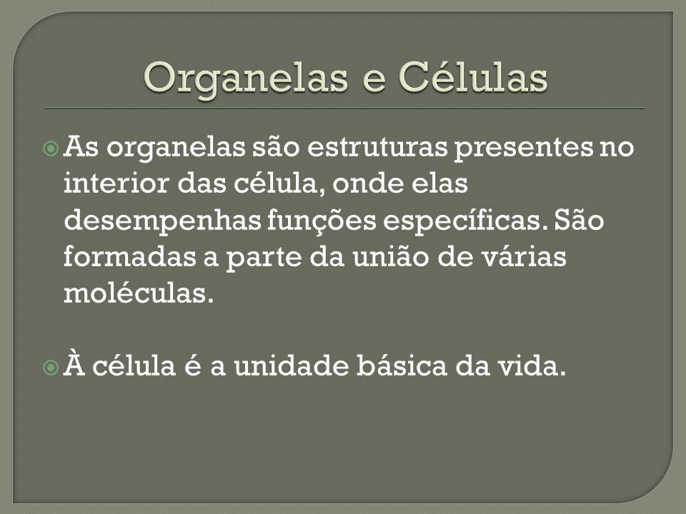 Organelas e Células