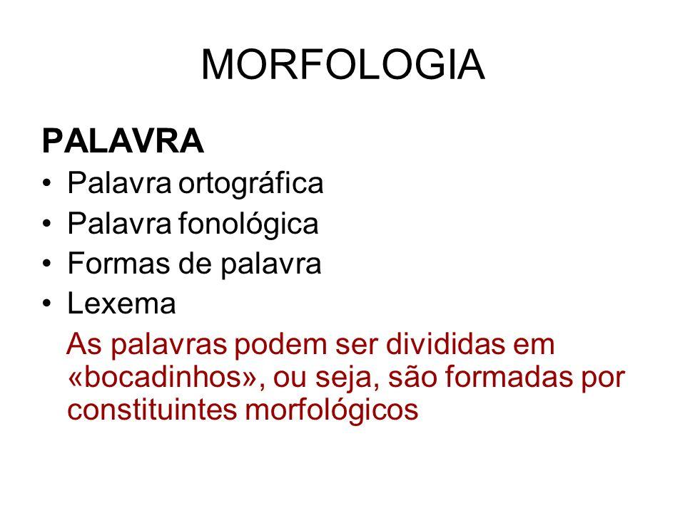 MORFOLOGIA PALAVRA Palavra ortográfica Palavra fonológica