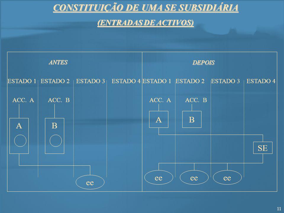 CONSTITUIÇÃO DE UMA SE SUBSIDIÁRIA