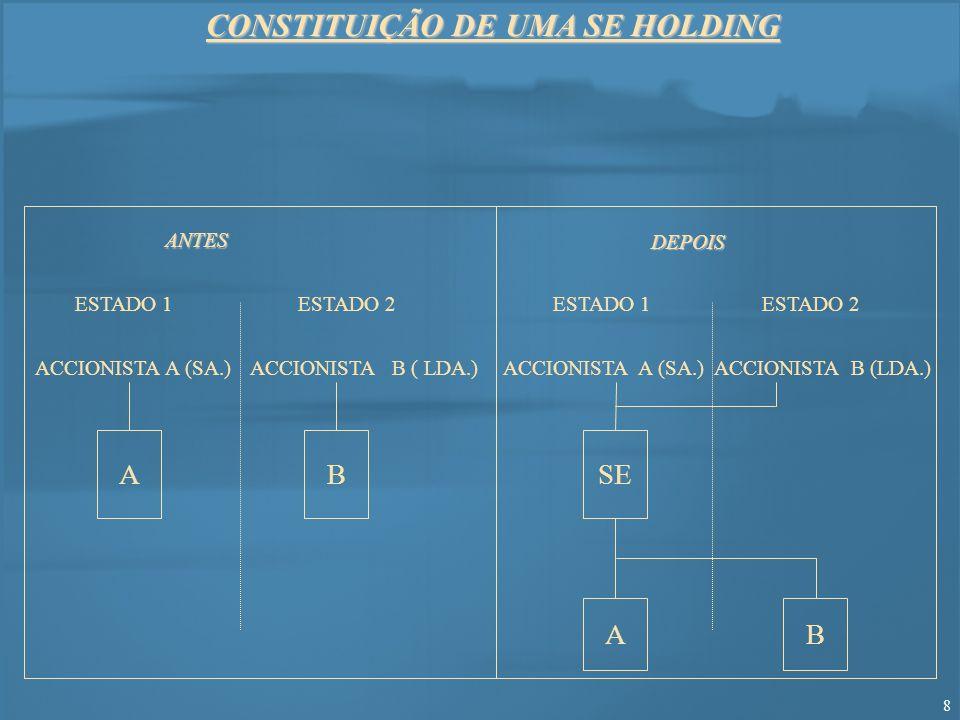 CONSTITUIÇÃO DE UMA SE HOLDING