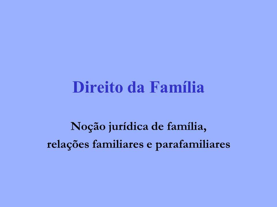 Noção jurídica de família, relações familiares e parafamiliares