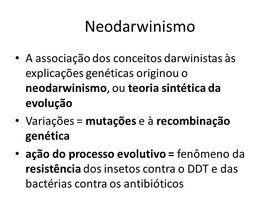 Neodarwinismo A associação dos conceitos darwinistas às explicações genéticas originou o neodarwinismo, ou teoria sintética da evolução.